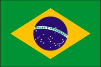 ブラジルへ花